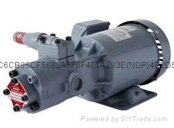 燃油輸送泵 TOP-2MY400-208HBMVB 1