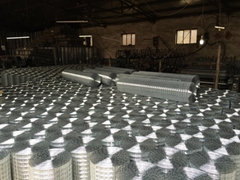electric ga  anized welded wire mesh,manufacturer,anping,China