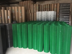 PVC Coated welded wire mesh ,manufacturer, China