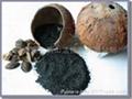果殼活性炭 5