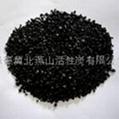 果殼淨水專用炭