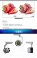 睿創20W太陽花款LED軌道燈 4
