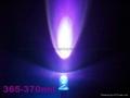 365nm紫光LED燈泡 1