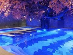 恒温泳池工程  恒温水疗工程  东莞恒温游泳池工程