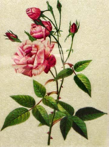 蜀繡玫瑰 1