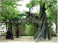 上海假山假树雕塑