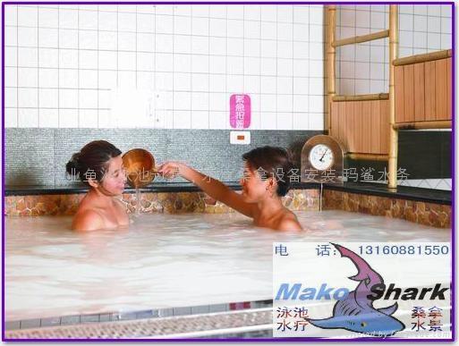 专业温泉水疗SPA脉冲按摩设备 1
