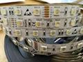RGBW LED Strip 24 Volts 3