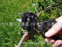 vegetable grafting pruner  2