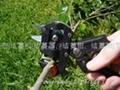 台湾SUCA嫁接机|果树嫁接机|嫁接器|嫁接机  2