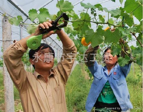 西紅柿綁蔓 番茄綁枝機 葡萄綁籐器 綁枝黃瓜鉗 綁葡萄 1