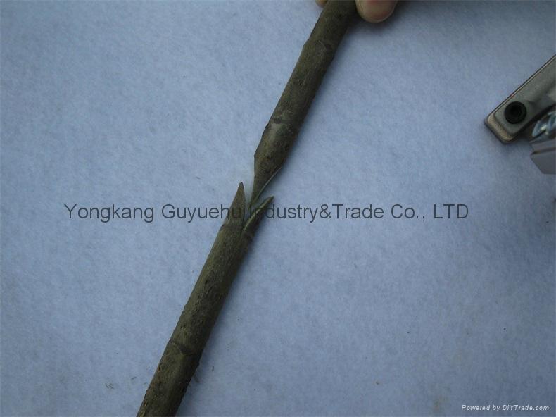 新款粗枝果樹嫁接機 苗木嫁接器 嫁接剪嫁接刀J68嫁接工具 11