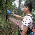 Electric Pruning Shear 3