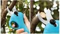 新款舒暢SC-8601電剪電動果樹剪果樹修枝剪鋰電園林剪充電剪 18