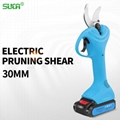 electric garden pruner, electric scissors, scissor electric pruning