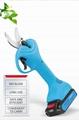 Electric branches scissors