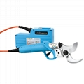 Rechargeable electric pruning shears