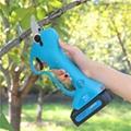 Powered sharp pruning shears