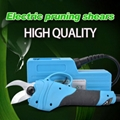 Electric lopping shears