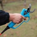 Garden  electric pruning shears