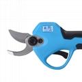 SUCA pruning scissors