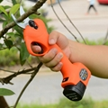 Garden scissors electric