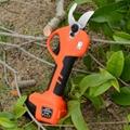 Lithium pruning shear