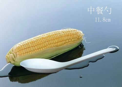 玉米淀粉一次性可生物降解餐具 中式汤匙 2
