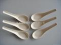 玉米淀粉一次性可生物降解餐具 中式汤匙 4
