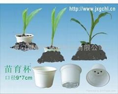 Eco-friendly biodegradab