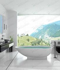 Bathtub Factory, Freestanding Bathtub ,Incomparable Bathtub BS-8616