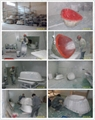 Washbasin Factory, Artistic Luxury Basin BS-8323