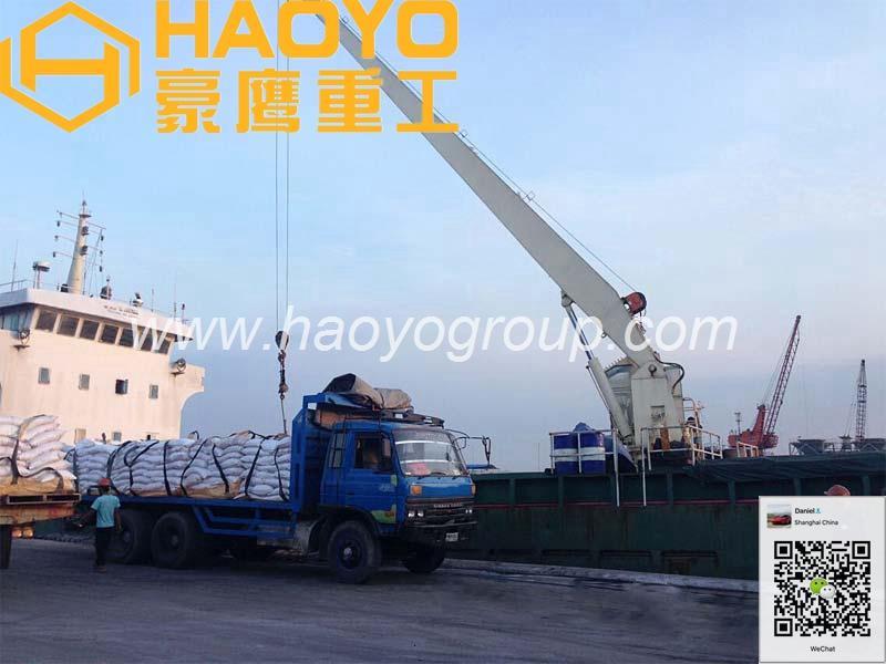 Shanghai HAOYO Offshore Marine Crane 1
