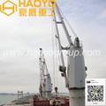 Fixed Boom Marine Deck Crane with