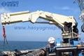定製半折臂船用甲板起重機工廠價 3