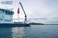 Ship Knuckle Boom Crane with Imported Main Parts