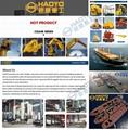上海豪鹰船用直臂吊厂家 吊机厂家 7