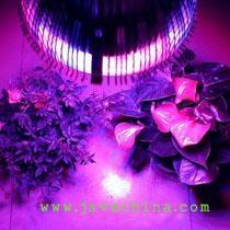 24W PAR38 Led Grow Lights