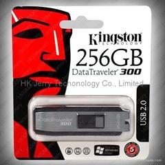 The most Competitive Kingston Datatraveler 300 256GB - USB Flash Drive