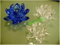 水晶蓮花 5