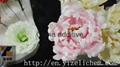 China food additive high concentation Polyglycerol Esters of Fatty Acids (PGE) 2