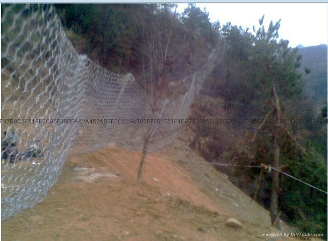 镀锌铁丝网 5