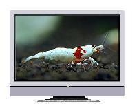 32寸16:9宽银幕液晶显示器