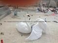 天津天鵝雕塑