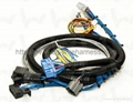 Wireharness/wiring harness/wire assembly 1