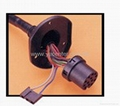 Power window wireharness