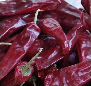 Dry chilli 5
