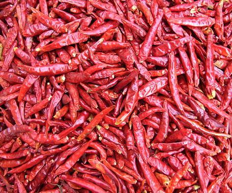 Dry chilli 1