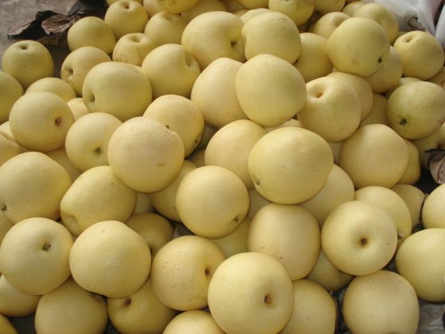 Pear 9