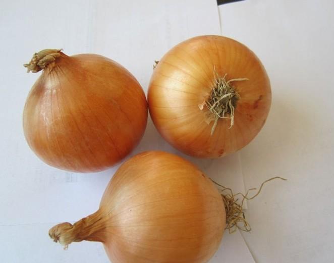 Onion 9